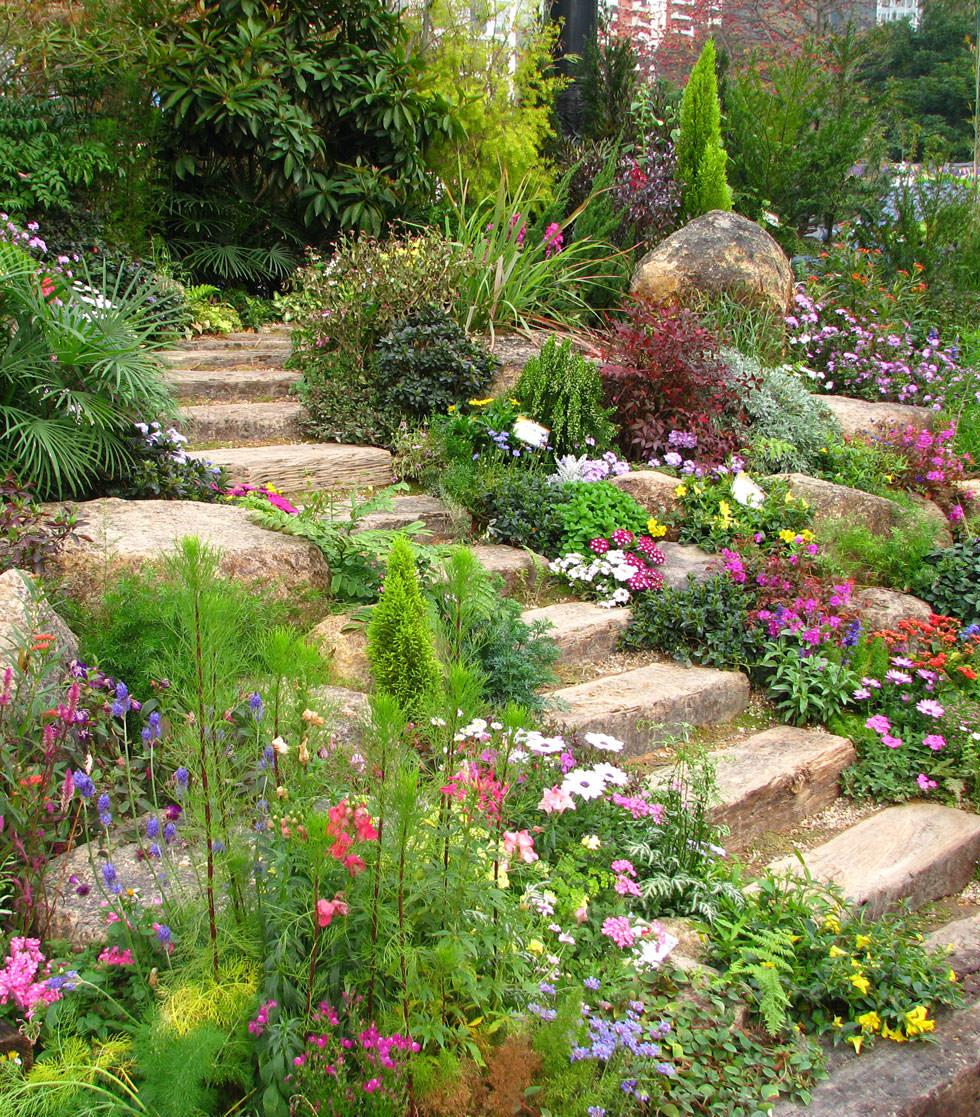Progettare un giardino roccioso originale ed affascinante for Progettazione aiuole