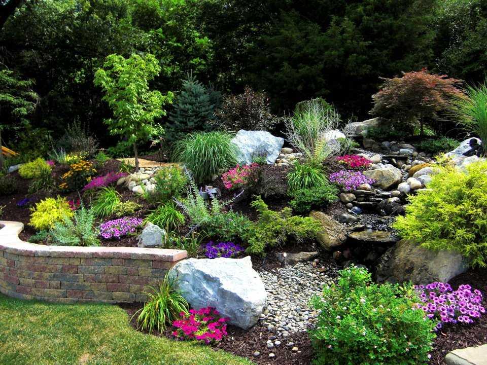 Progettare un giardino roccioso originale ed affascinante for Progetti di giardini