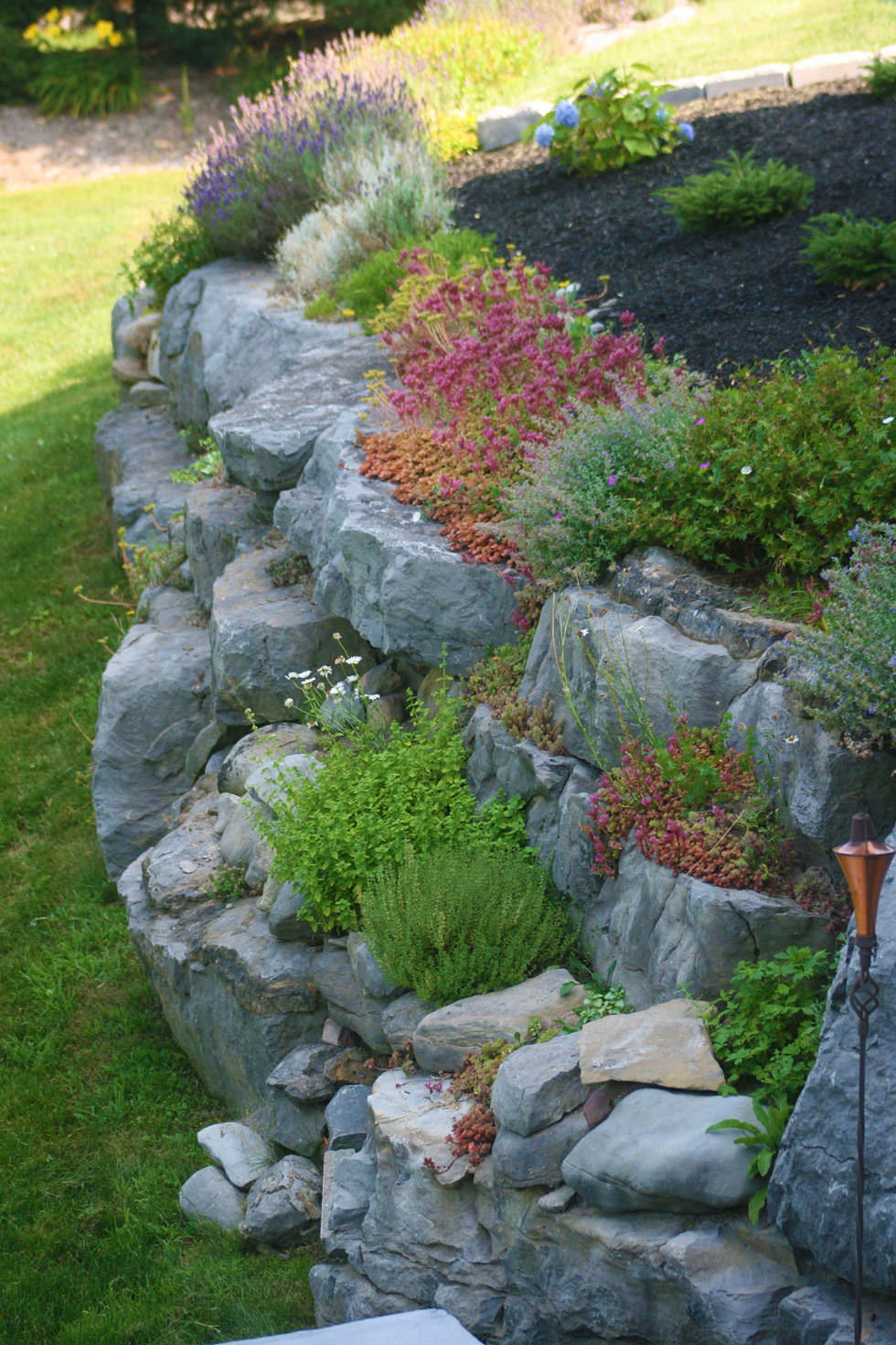Piante Per Aiuole Perenni progettare un giardino roccioso originale ed affascinante