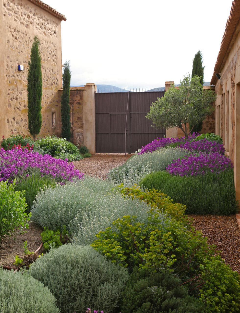 Progettare un giardino rustico pieno di colori e calore for Cespugli giardino
