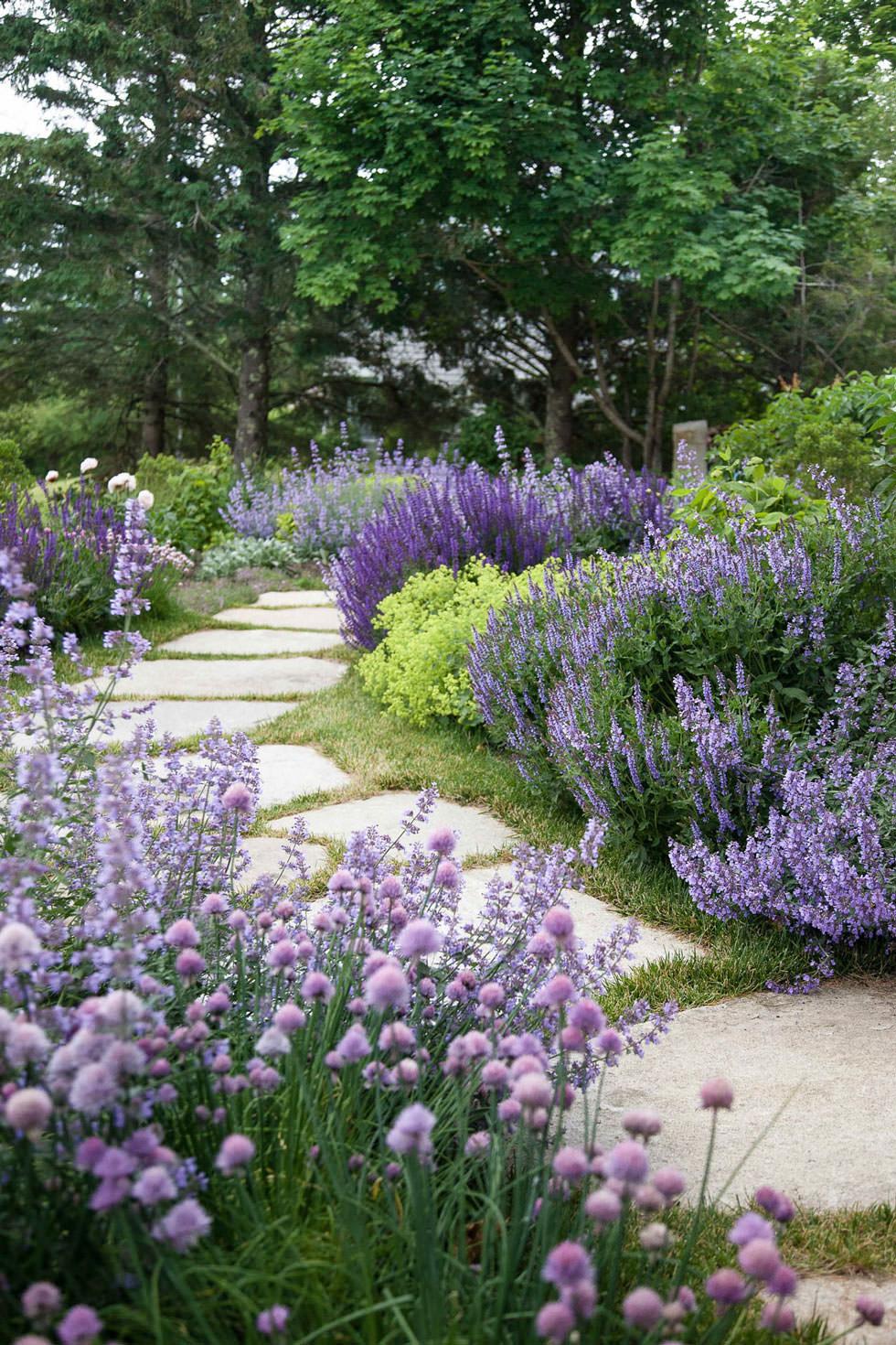 Piante Sempreverdi Da Aiuola progettare un giardino rustico pieno di colori e calore